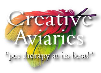 Creative Aviary LLC logo